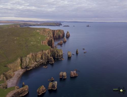 Sea Stacks Shetland